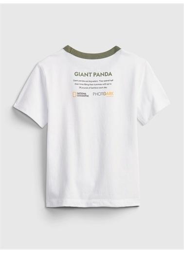 Gap Organik Pamuklu  National Geographic Desenli T-Shirt Siyah